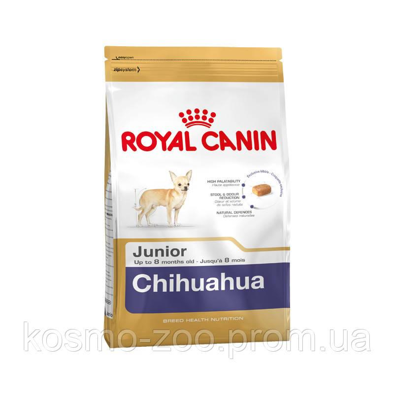 Сухой корм Роял Канин Юниор для щенков породы чихуахуа (Royal Canin Chihuahua Junior), 0,5 кг