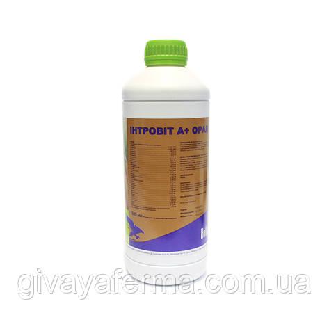 Интровит А+ Орал 1 л, водорастворимый витаминно-аминокислотный комплекс, фото 2