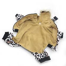 Комбінезон для собак Тигрюля коричневий, фото 3