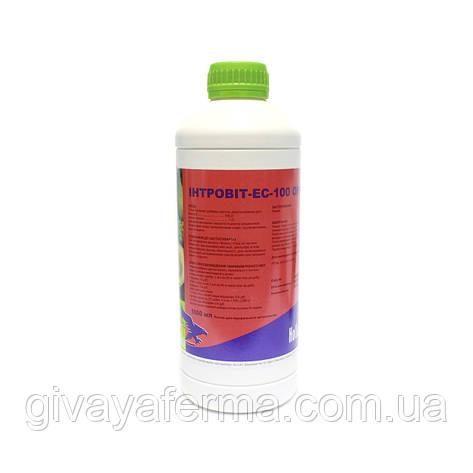 Интровит ES-100 Орал 1 л, витамин Е + Селен, для животных и птиц, Интерхим, фото 2