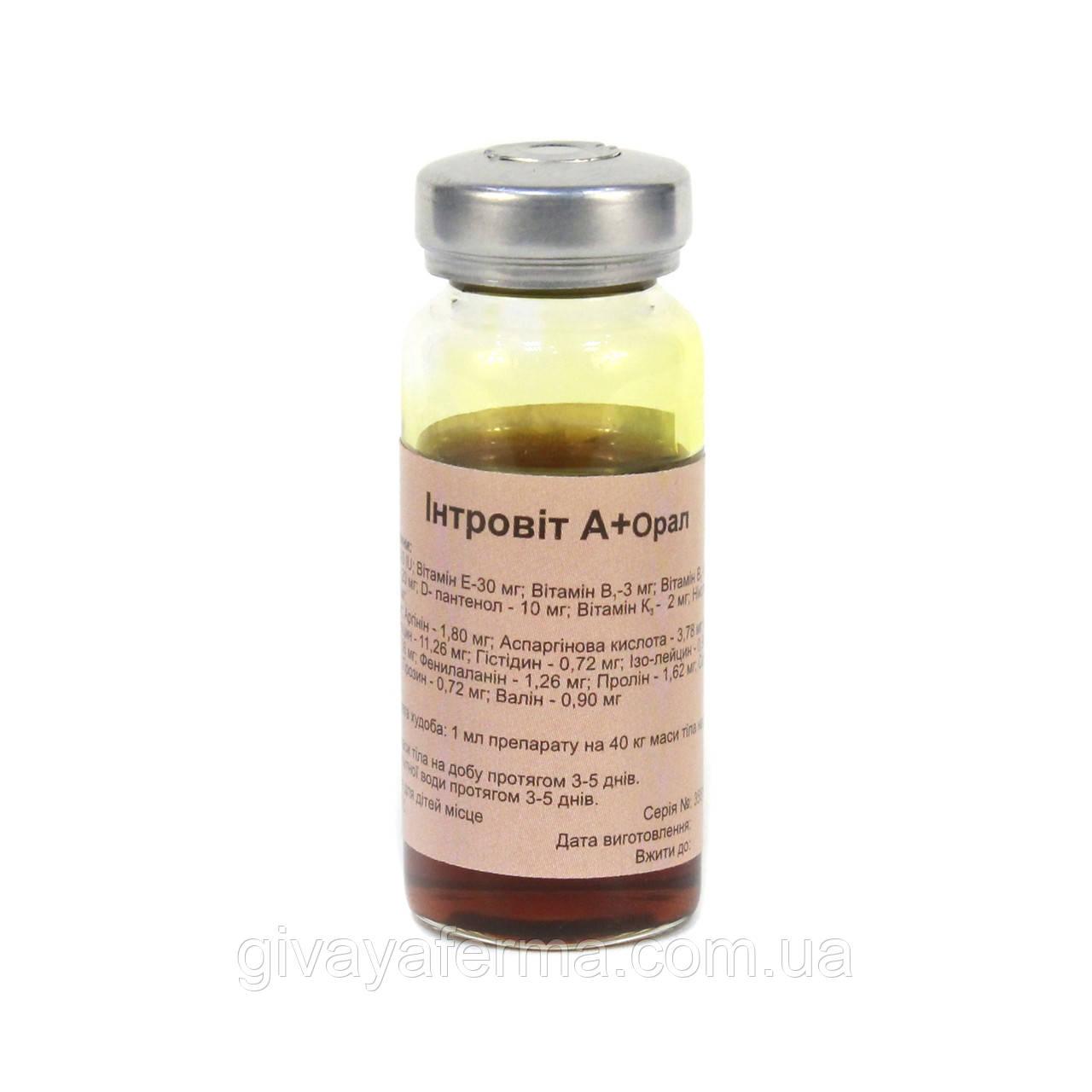 Интровит А+ Орал 10 мл,Интерхим, водорастворимый витаминно-аминокислотный комплекс