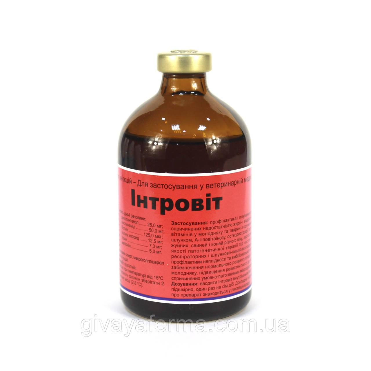 Интровит 100 мл, Интерхим, витаминно-аминокислотный комплекс ИНЪЕКЦИИ
