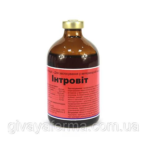 Интровит 100 мл, Интерхим, витаминно-аминокислотный комплекс ИНЪЕКЦИИ, фото 2
