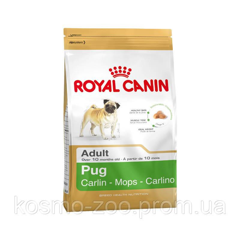 Сухой корм Роял Канин для собак породы мопс (Royal Canin Pug Adult), 3 кг
