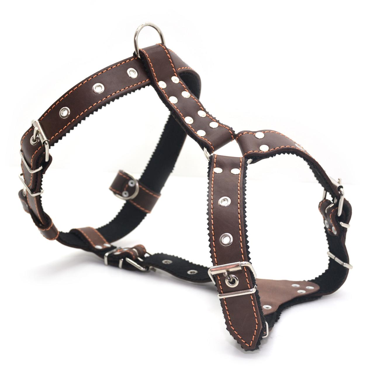 Шлея нагрудник для собак кожаная Ротвейлер коричневая