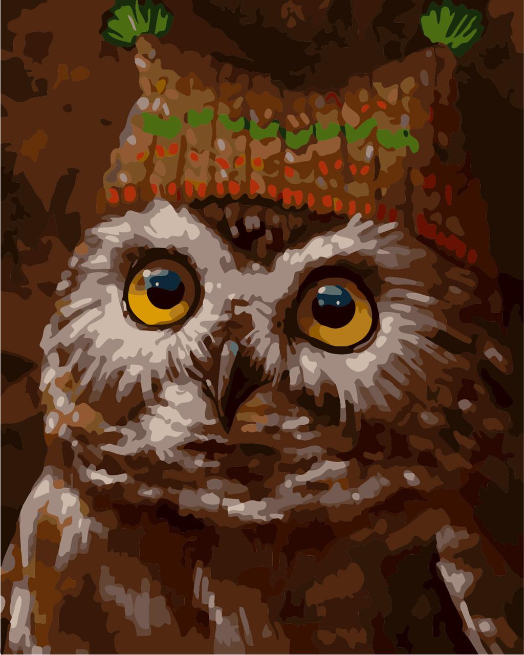 "Картина по номерам ""Сова в шапке"" 40*50см: продажа, цена в ..."