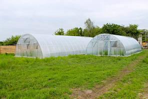 Арочные фермерские теплицы Эко Топ 8х10х3,7 Стандарт 8 мм