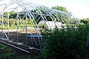 Арочные фермерские теплицы Эко Топ 8х10х3,5 Стандарт 10 мм, фото 7