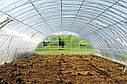 Арочные фермерские теплицы Эко Топ 8х10х3,5 Стандарт 10 мм, фото 8
