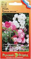 Семена цветов Роза Крылья Ангелов