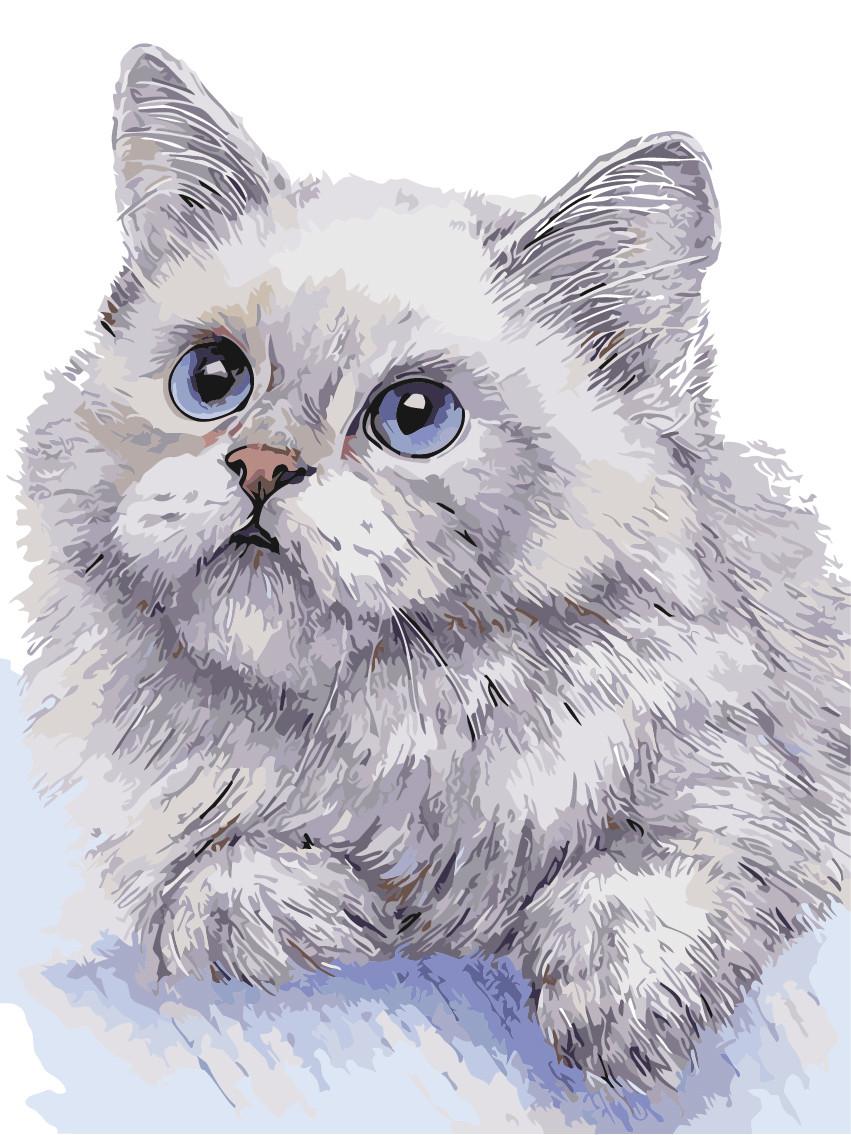 "Картина по номерам ""Белый кот"" 30*40см"