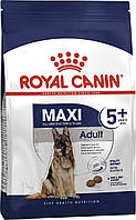 Сухой корм Royal Canin Maxi Adult 5+ для взрослых собак крупных размеров от 5 лет