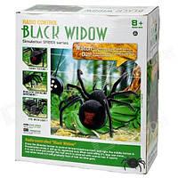 Паук на Радиоуправлении Черная вдова Black Widow, фото 1
