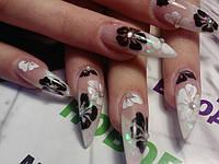 Курсы по наращиванию ногтей г.Киев Дорогожичи