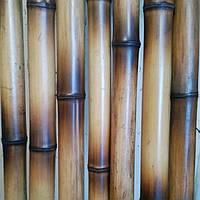 Бамбуковый  ствол декоративный (диаметр  3-4 см , длина 3 м)