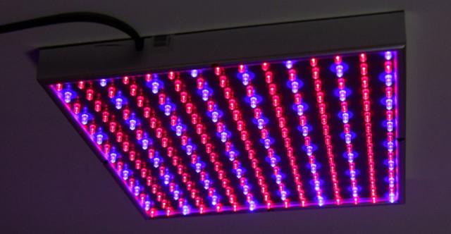 LEDы лампа