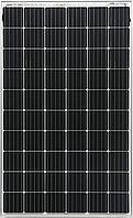 Солнечная панель Yingli Solar Panda Bifacial 60CF 290W (5BB)