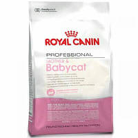 Royal Canin BABYCAT-34 - корм для котят 10кг.