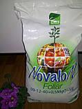 Водорастворимое удобрение Новалон Фолиар 9-12-40+0,5MgO+ME 10 кг, фото 2