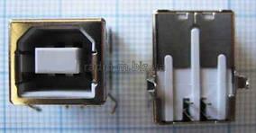 Гнездо USB-B