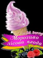 Сухая смесь со вкусом Лесной ягоды 1000 г.