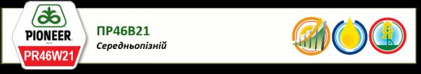 Семена озимого рапса PR46W21 PIONEER