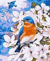 """Раскраска по номерам для взрослых и детей """"Птичка на яблоне"""", 40х50 см, Без Коробки"""