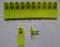 Ушная бирка б.н. Е 18х53 мм (свиньи, овцыі)