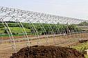 Плотная фермерская теплица под пленку 10х60 (шаг 2,5 м) Фермер Профи, фото 4