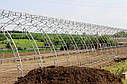 Теплица под пленку фермерская 10х40 (шаг 2,5) Фермер Профи, фото 9