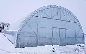 Тунельная фермерская теплица под пленку 10х100 (шаг 2,5 м) Фермер Профи