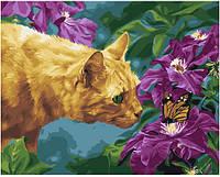 """Раскраска по номерам для взрослых и детей """"Рыжий кот и бабочка"""", 40х50 см, Без Коробки"""
