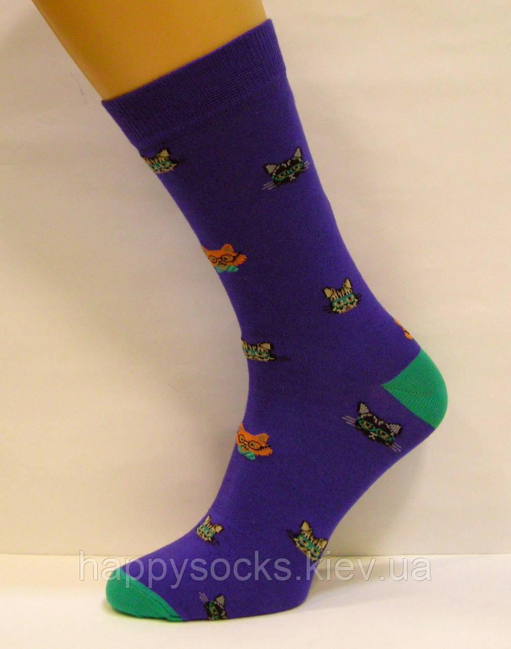 Яркие носки мужские высокие с котами