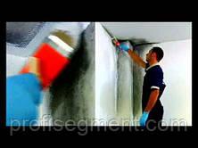 Силиконовая краска для фасадов Silancolor Paint (20 л), фото 3