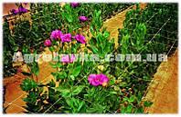Шпалера цветочная белая 1,7х500м, HORTINET (Италия)