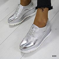 Серебристые туфли оксфорды 8151 (SH)