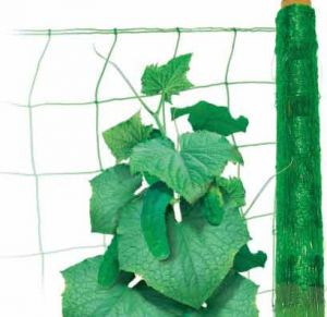 Сетка шпалерная огуречная (зелёная)