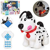 Собака на радиоуправлении 66001, р/у, 20см, аккум, муз-звук(англ), свет, програмир, USB заряд