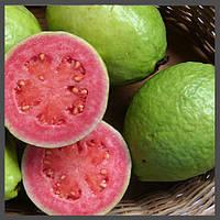 Ароматизатор TPA Guava, фото 1