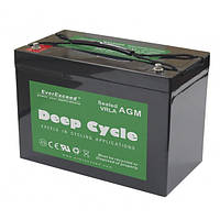 Аккумулятор 100 Ач EverExceed DP-12100