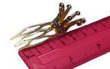 Заколочка - гребень с короной, фото 2