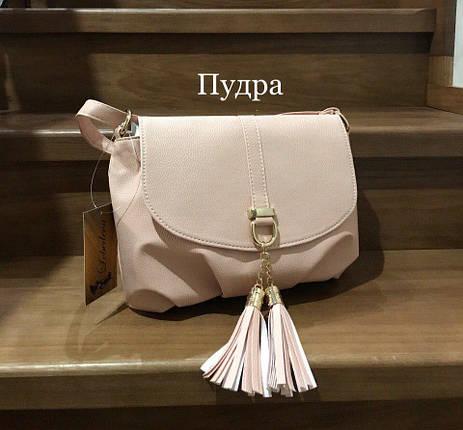 Модные сумки небольшие Пудра, фото 2