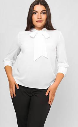 998ffd927c9 Шифоновая блузка большого размера с бантом 50-54 р - Цена 750 грн ...