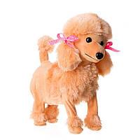 Оптом и в розницу в Украине 371427 мягкая игрушка собака Пудель