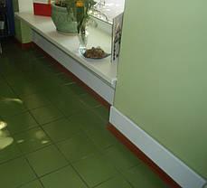 Настенный обогреватель теплый плинтус Uden-s 100 вт, фото 2
