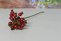 Ветка ягод шиповника