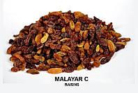 Изюм Индия Malayar C + доставка