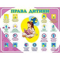 Стенд Права дитини (фіолетовий)