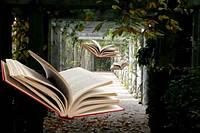 Урок – основна форма організації навчального процесу по вивченню літератури
