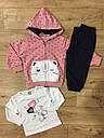 Спортивный костюм для девочек Lemon Tree 1-5 лет, фото 4